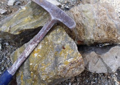 Sulfides replacement in Siltstones