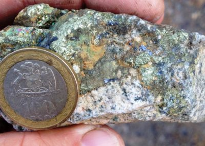 Monzodiorite Porphyry